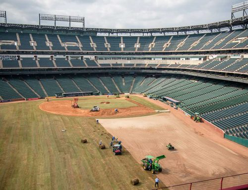 The Grass is Always Greener: Turfgrass Installation at Globe Life Park in Arlington, Home of the Texas Rangers